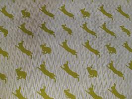 Kokka Echino Canvas - Rabbitsdouble