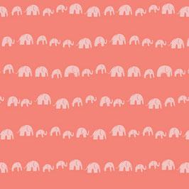 Selva Elephants - Apricot - Baumwolle