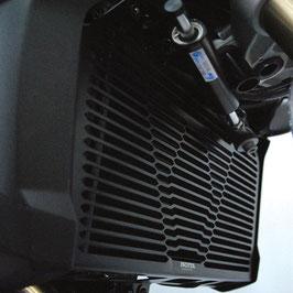Grille radiateur BMW F800R à partir de 2015