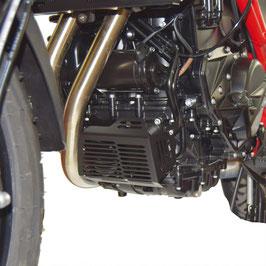 Protection filtre à huile / échangeur de chaleur BMW F700GS