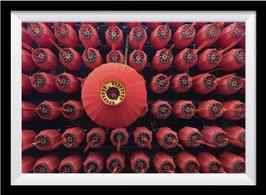 Chinese Lantern I