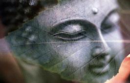 Geführte Meditation ( für Anfänger)