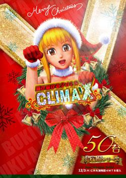 クリスマス 海シリーズ