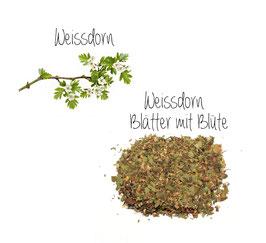 Weissdornblätter mit Blüten geschnitten