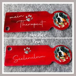 Einkaufswagenlöser Berner Sennenhund in Rot