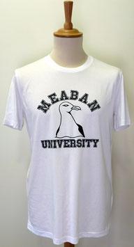 T-shirt Homme Méaban blanc
