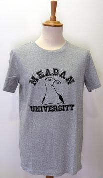 T-shirt Homme Méaban gris chiné