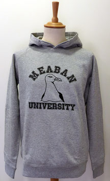 Sweat-shirt capuche Méaban gris