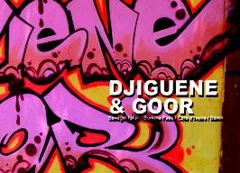 Livre Djiguene & Goor