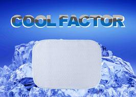 クールファクター 接触冷感枕パット1枚(サイズ50×36㎝)【9300200】
