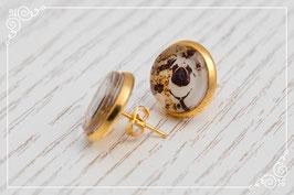 Steckohrring gold