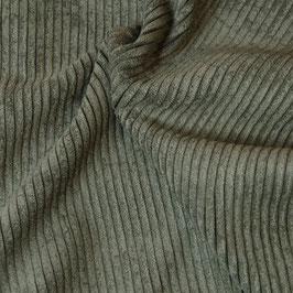 Velours lichen