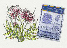 JANE NESTORENKO FLORAL COLLECTION - DAHLIAS UNMOUNTED STAMP SET A5