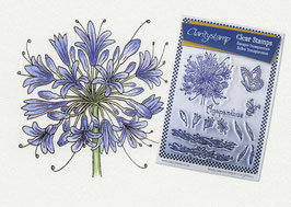 JANE NESTORENKO FLORAL COLLECTION - AGAPANTHUS UNMOUNTED STAMP SET A5