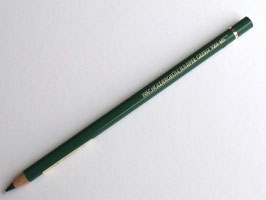 POLYCHROMOS PENCIL -  JUNIPER GREEN