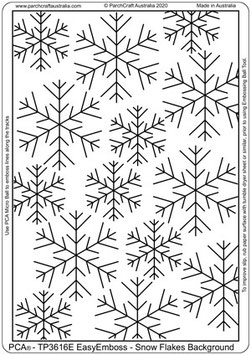 PCA TEMPLATE  SNOWFLAKE BACKGROUND