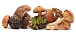 Pilze und herbstliche Genüsse