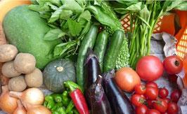 旬の野菜お試しBセット(1回)