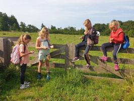 Leskaart  Online Bijscholing Mind Walk Kids