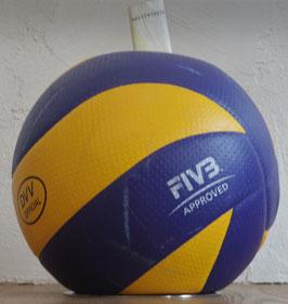 Volleyball Mikasa Blau-Gelb! Spardose oder Mannschaftskasse? inspired by Janne