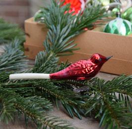 Vogel op knijper, rood