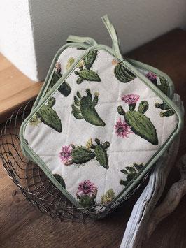 Topflappen Kaktus