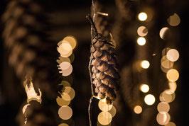 SPEZIAL: Adventstimmung in Graz - Praxis Pur zur blauen Stunde