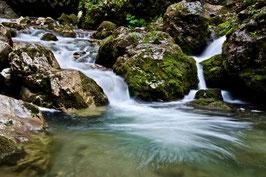 THEMA: Wasserfälle & Natur in der Bärenschützklamm