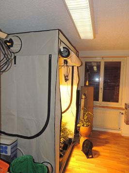 Home Box Ambient 120cmx120cmx200cm