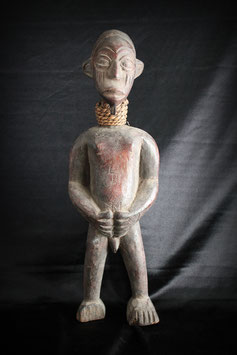 Figura fertilidad Balue (Costa de Marfil) - Figure fertility Balue (Ivory Coast)