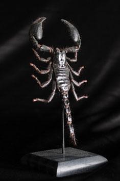 Escorpión sobre peana (Scorpionida) Scorpion on base