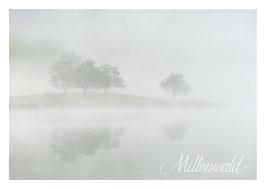 Postkarte MW_05