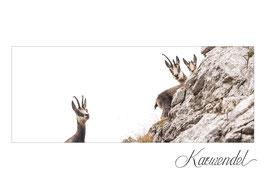 Postkarte KW_16