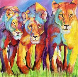 LION LADY'S