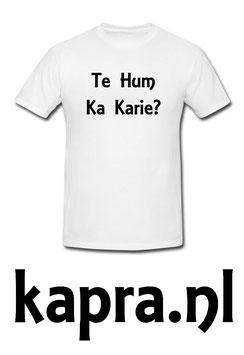 Te Hum Ka Karie?