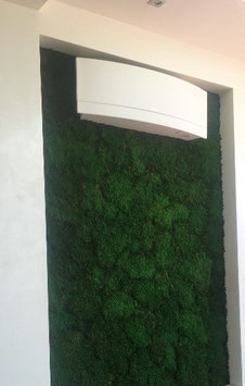 MUR VEGETAL NATURE STABILISE