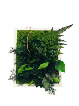 24x30 Tableau végétal stabilisé BALADIN