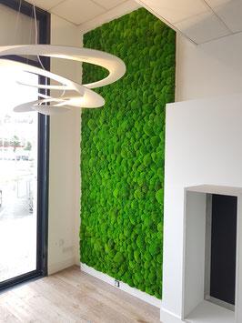 mur végétal mousse boule