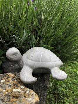 "Schildkröte ""Sam"" -groß-"