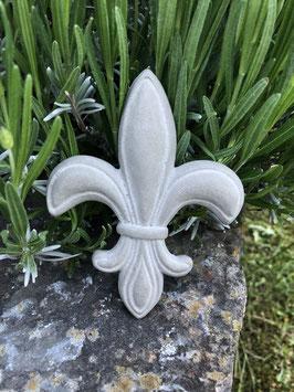 Große französische Lilie -natur-
