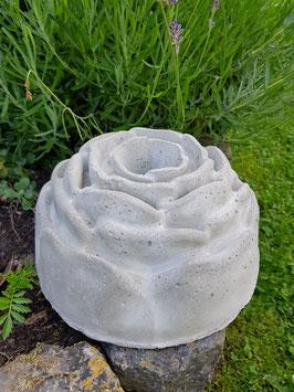 Gugelhupf - Rose -