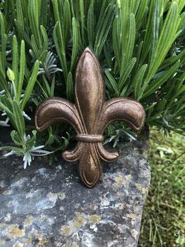 Große französische Lilie -kakao-