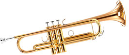 Monatsmiete Trompete