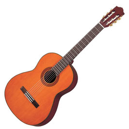 Monatsmiete Akustische Gitarre