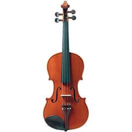 Monatsmiete Violine