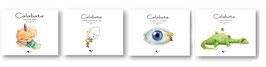 Colección completa (4 libros)