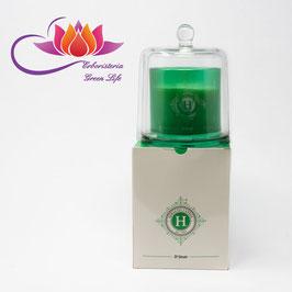 Candela Deluxe Tè Verde