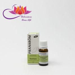 Ravintsara Olio Essenziale Bio