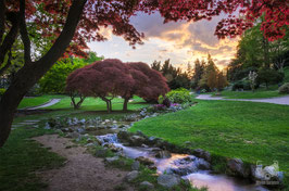 09 - Il Giardino Roccioso al tramonto