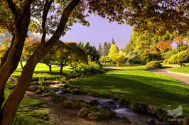 01 - Il Giardino Roccioso al Parco del Valentino